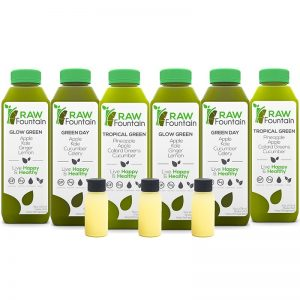 Raw Fountain Juice 3 Day Juice Cleanse