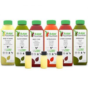 Raw Fountain Juice Rise N Shine 18 Bottles