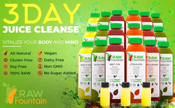 Raw Fountain 3 Day Juice Cleanse 18 Bottles