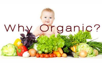 Don't Panic & Go Organic!