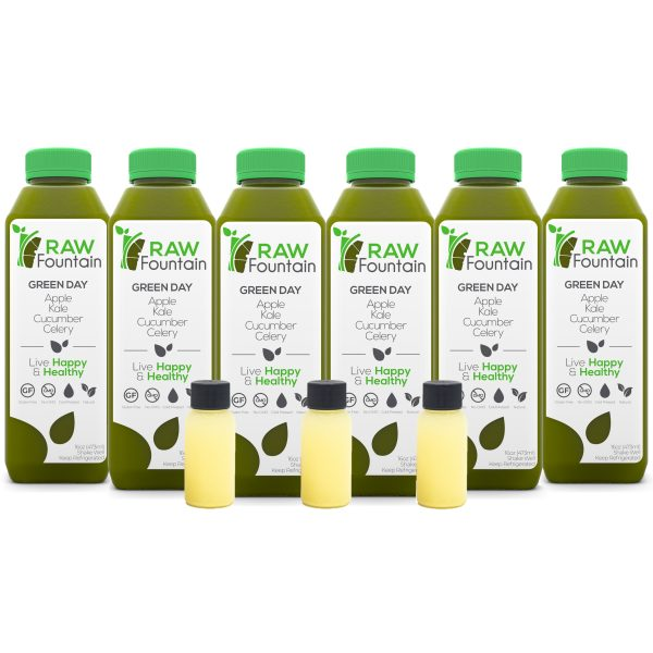 Raw Fountain Juice Coconut 18 Bottles